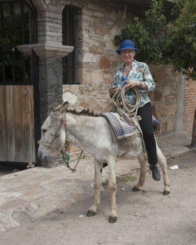 rancho tour burro ride